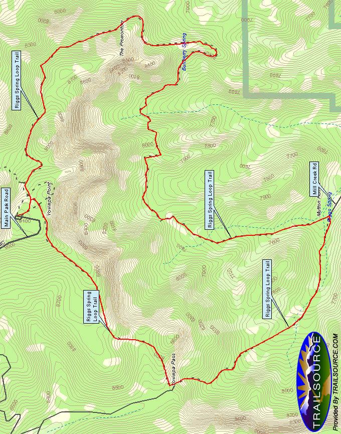 Riggs Springs Loop Hiking Map