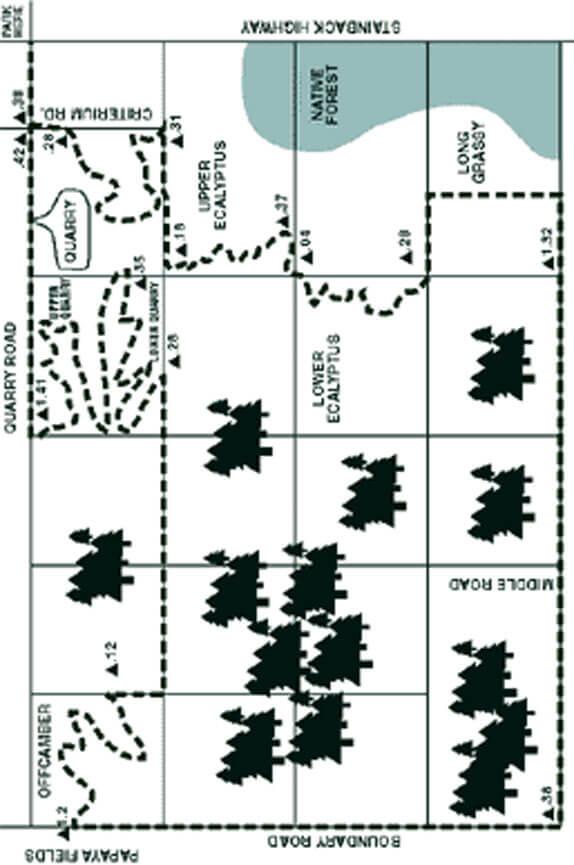 Kulani Forest Trail System Hiking Map