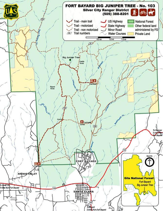 Fort Bayard Big Juniper Tree Trail Mountain Biking Map