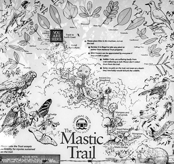 Mastic Trail Hiking Map