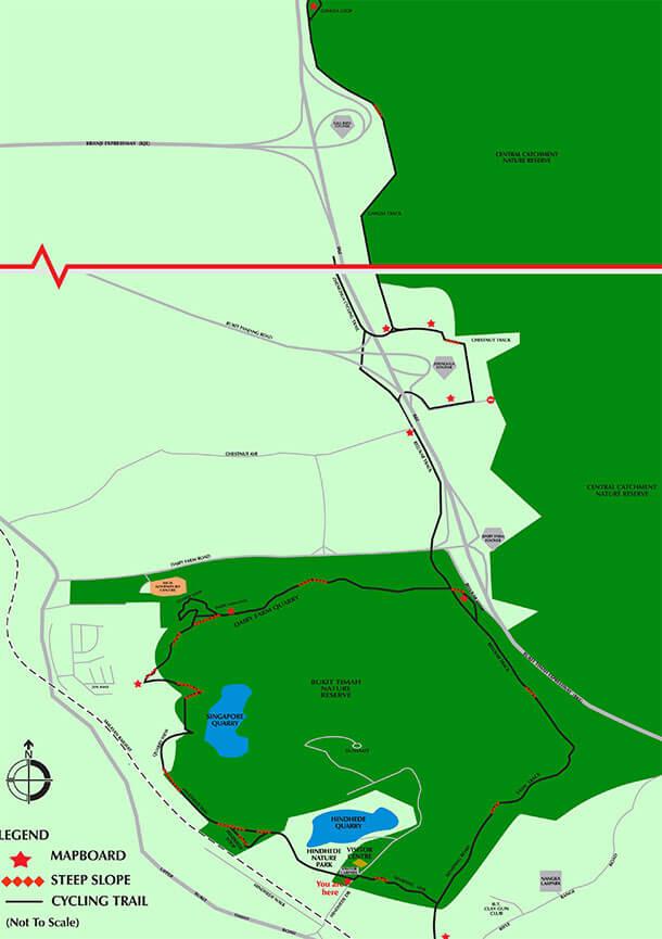 Bukit Timah Nature Reserve Mountain Biking Map