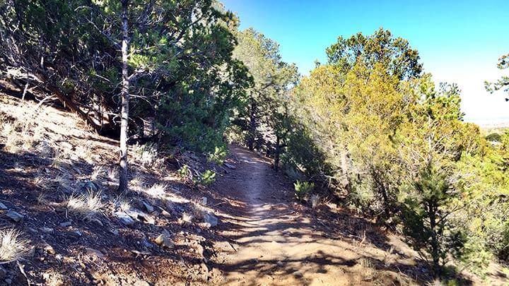 Mountain Biking the Talpa Traverse in Taos